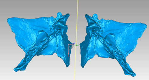 geomagic-wrap-dinosaur-parts-scan